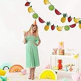 1件新鮮な夏のキラキラフルーツのテーマパーティバナーフラッグバースデーパーティデコレーション装飾