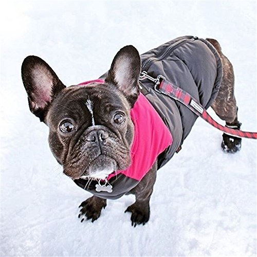 Lesypet 犬用秋冬服 ドッグウェア スキーウェア 防寒...