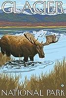 ムースDrinking at Lake–グレイシャー国立公園、MT 9 x 12 Art Print LANT-13764-9x12
