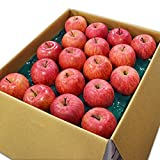 山形県産 完熟 サンふじりんご 10kg 約32~36玉前後 【名水百選の水使用】