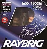 RAYBRIG(レイブリック)ヘッドランプ用LEDバルブ 12V 16/16W H4 ホワイト 二輪用 RK21