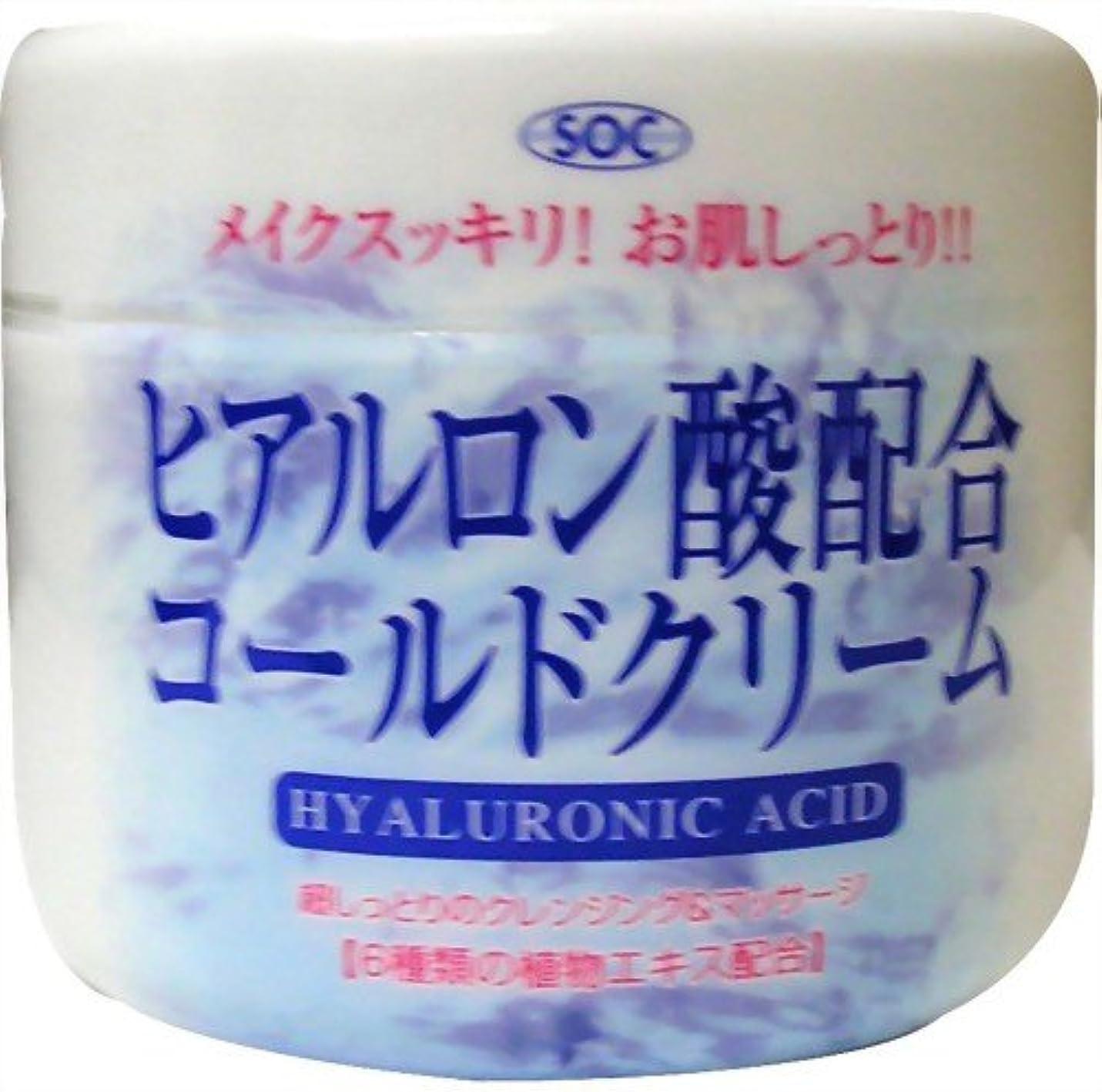 におい引退するカプセル澁谷油脂 ヒアルロン酸コールドクリーム 270g