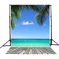 5x7ft hawaii seaside beach sky tree scenery photography background
