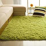 カーペット ラグマット 絨毯 スリップカーペット ベッドルーム/リビングルーム 80*120cm