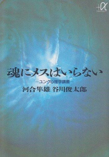 魂にメスはいらない ユング心理学講義 (講談社プラスアルファ文庫)
