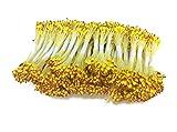 CONVERSE ジャージ 花粉レッドイエローミックス花粉水ドロップヘッドFlower Stamen Pollensハンドメイド花