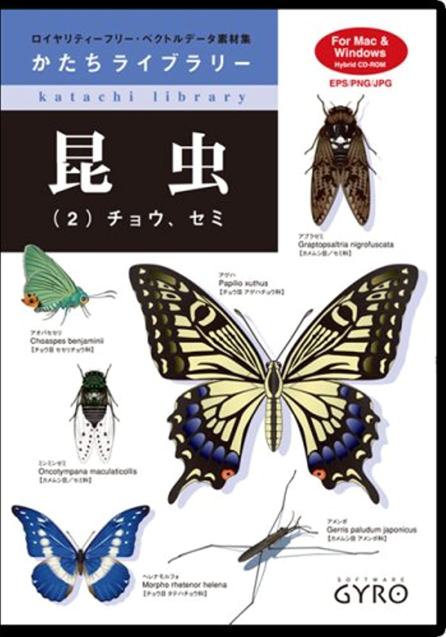 昆虫(2) チョウ?セミ