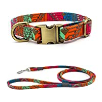Fashionable Dazzling Pattern Bohemian Style Pet Dog Collar Traction Suit Bronze Metal Buckle Dog Chain Laser Lettering Necklace Pet Dog Supplies (M, stripe)