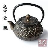 南部式 鉄瓶 鉄器 急須 カラー ティーポット ステンレス茶こし付き ih 直火対応 南部 亀甲 0.8L