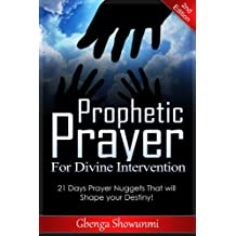 Prophetic Prayer for Divine Intervention: 21 Days Prayer Nuggets that will Shape your Destiny!