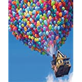 Wowdecor Paint by Numbers Canvas Kits for Adults Beginner Kids, DIY Acrylic Number Painting - Colorful Hot Air Balloon 16x20 inch - Wall Art Digital Oil Painting Home Decor Christmas Gifts (Frameless)