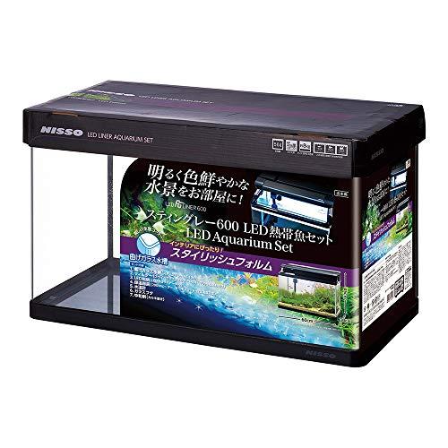 ニッソー スティングレー600LED熱帯魚セット