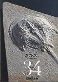 週刊 日本の天然記念物 動物編 カブトガニ 34  小学館 画像