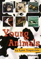 Young Animals Below Level Grade 1: Harcourt School Publishers Trophies (Trophies 03)