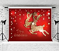 Kate クリスマス 写真 背景 子供用 写真撮影 カスタマイズフォトスタジオ 背景 小道具