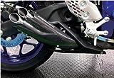 【サクラ工業】 PRUNUS スリップオンマフラー MT-25、MT-03、YZF-R25(ABS)、YZF-R3 ABS【Q5KSKRY01031】
