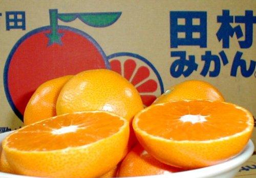 和歌山産 紀州有田 田村みかん 5kg Sサイズ 58個前後入り 市販箱にてお送りします