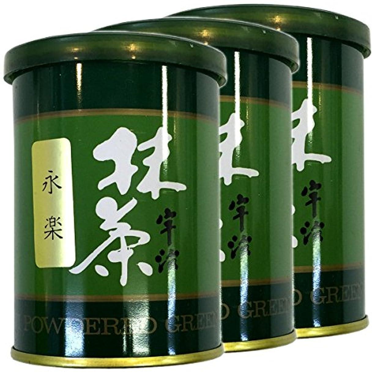 私たちの考え大型トラック【高級宇治抹茶】抹茶 粉末 永楽 40g ×3個セット