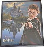 ハリーポッター プリントクッキー USJ 公式 「ザ ウィザーディング ワールド オブ ハリー ポッター The Wizarding World of Harry Pott..