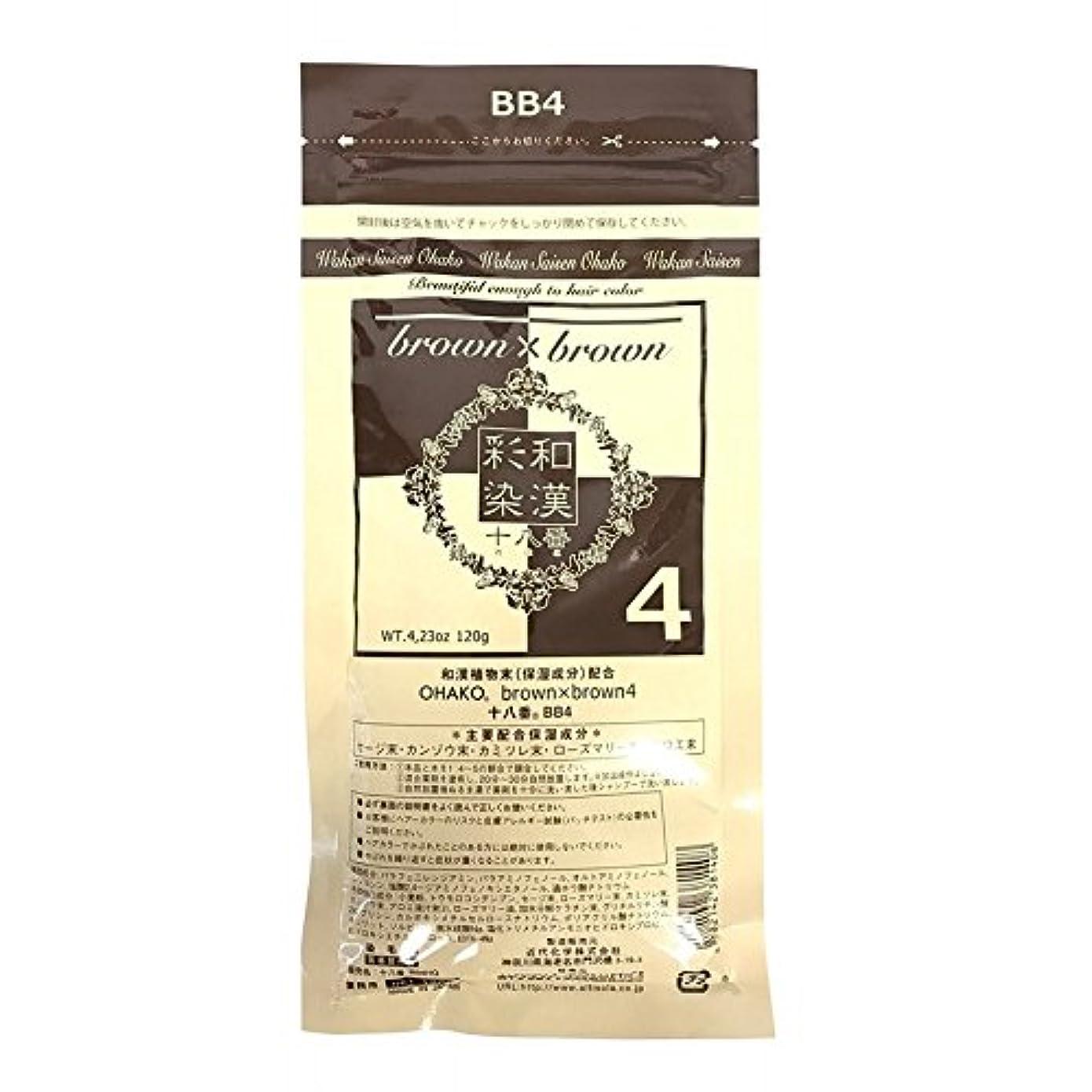 バケットメディックプレゼンターグランデックス 和漢彩染 ブロコローレ BB4 120g