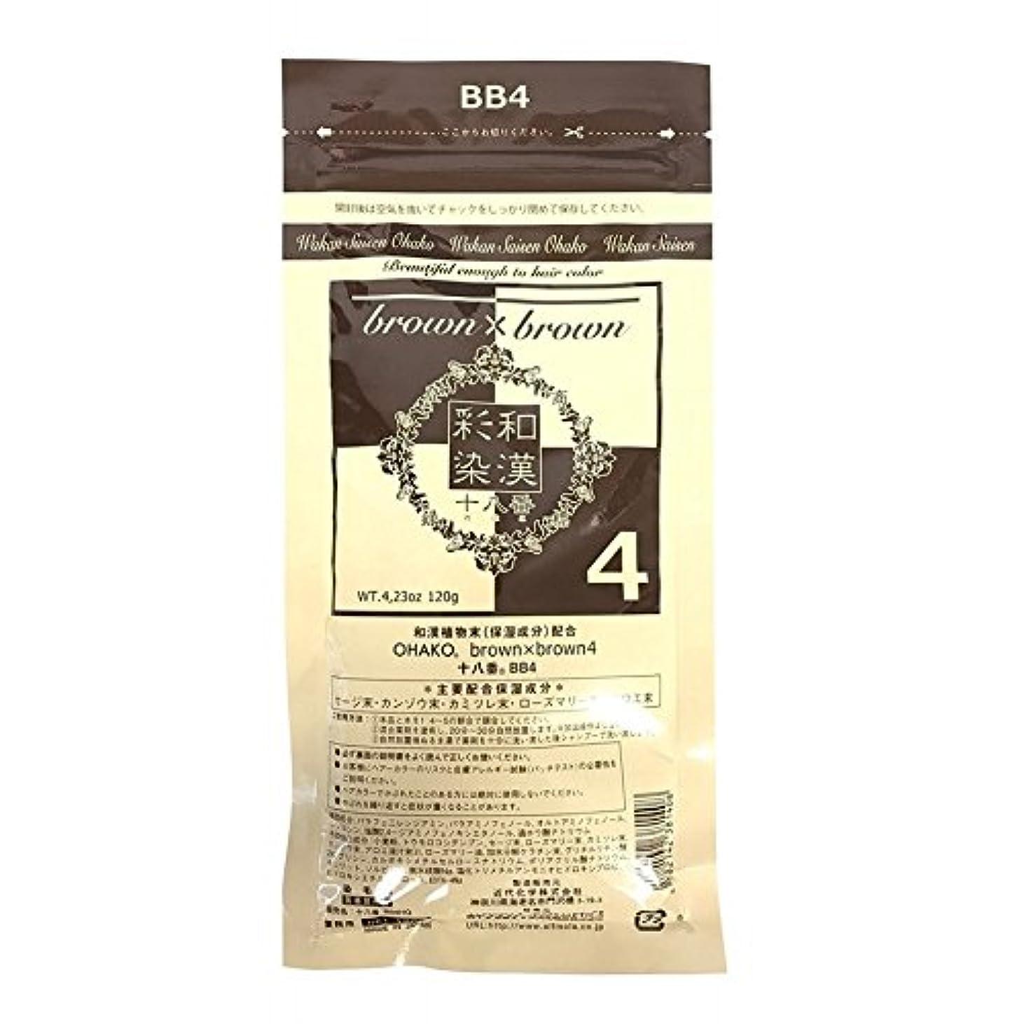 アクティブ絡まる時計回りグランデックス 和漢彩染 ブロコローレ BB4 120g