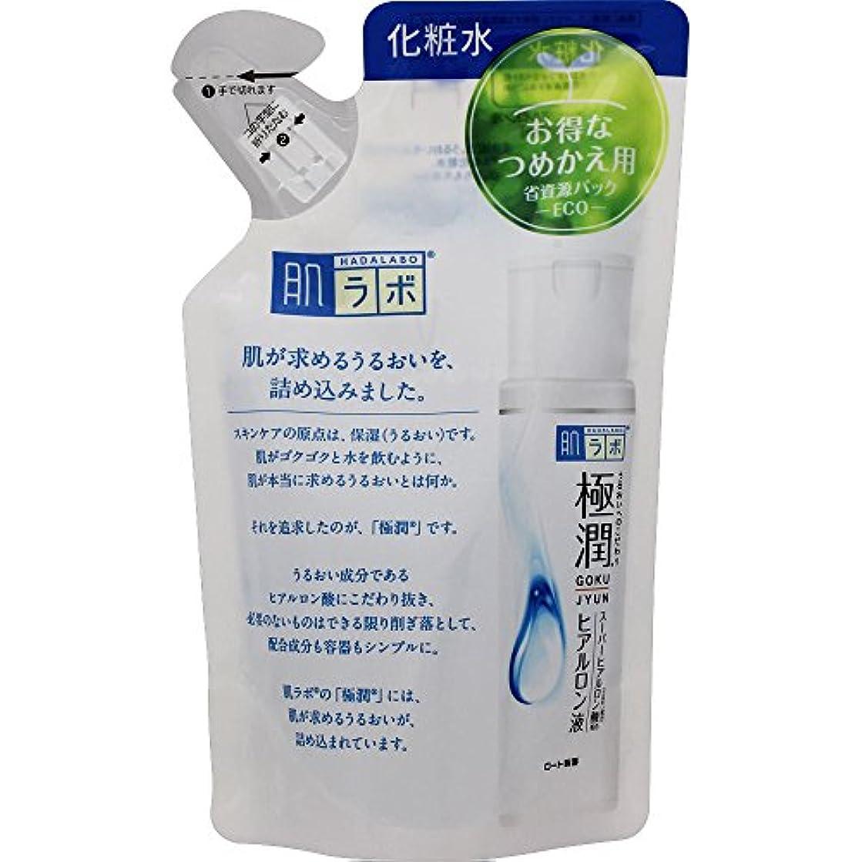 受け皿日ベース肌ラボ 極潤 ヒアルロン酸 化粧水 ヒアルロン酸3種配合 詰替用 170ml