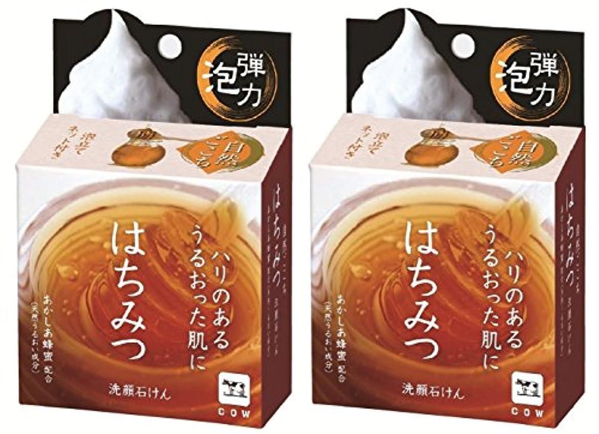 フック連合用量【2個セット】自然ごこち はちみつ 洗顔石けん 80g