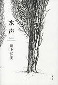 川上弘美『水声』の表紙画像