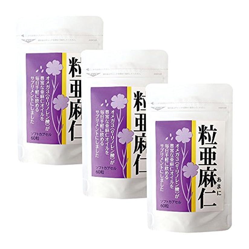 間つかむ概要粒亜麻仁(60粒)×3袋セット