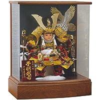五月人形 子供大将ケース飾り 天明 アクリルケース飾り GOH-526142 平安豊久 GC-228