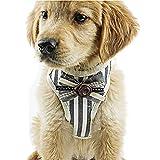 Hisoul ペット 犬 胸 ストラップ ノー プル ストライプ タイ ネック 調整可能 胸 ベルト ペット アウトドア 快適 ベスト 犬用 紐付き 簡単コントロール スモール ミディアム ラージ 犬用 S-Bust: 11.02''-/15.75'' レッド 35866d