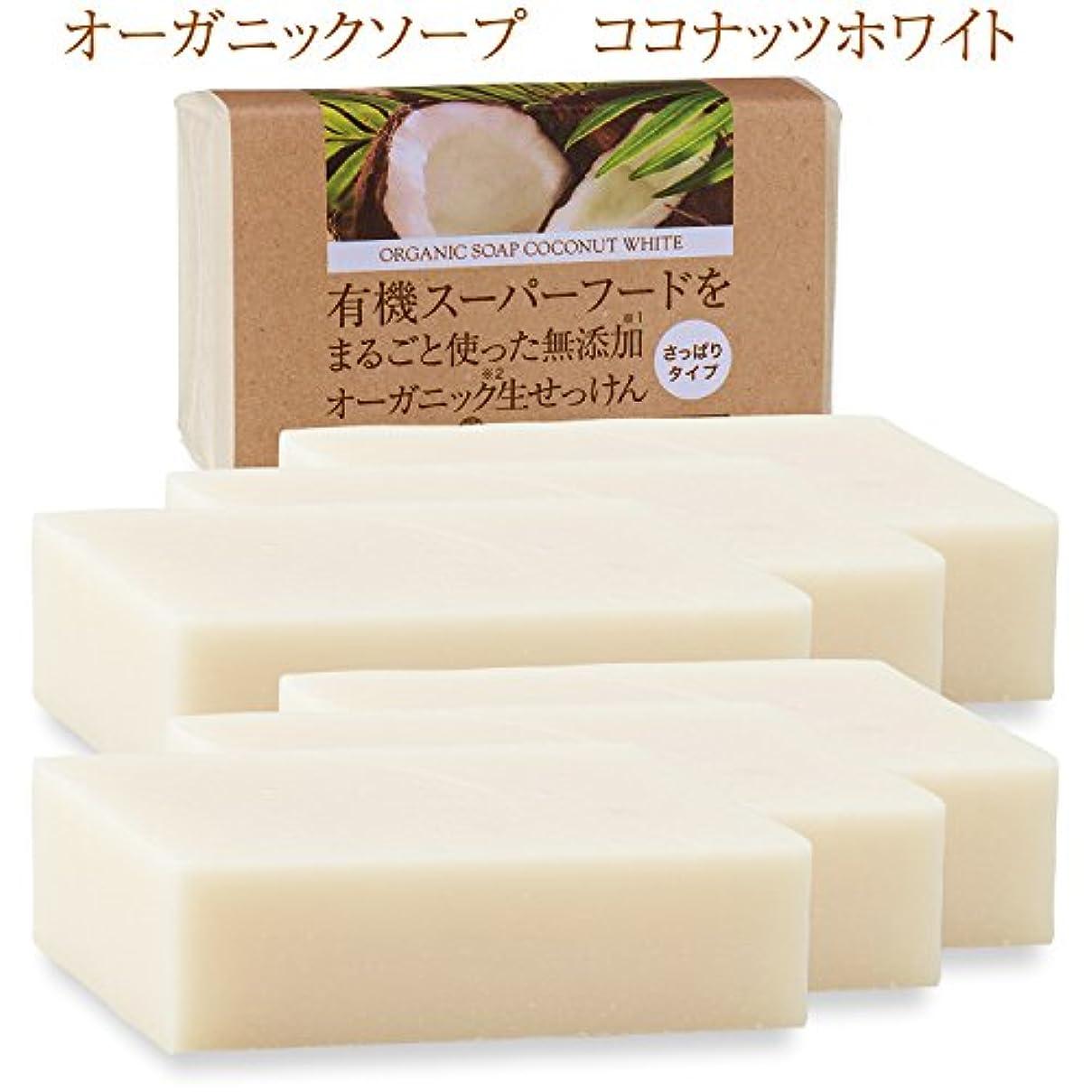地球玉トレーダー有機ココナッツオイルをまるごと使った無添加オーガニック生せっけん(枠練)Organic Raw Soap Coconut White 80g 6個 コールドプロセス製法 (日本製)メール便