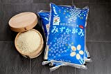 【新米】みずかがみ 環境こだわり米 10kg【平成29年・滋賀県産】 (白米10kg×1袋)