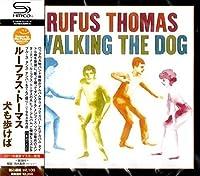 Walking Record the Dog
