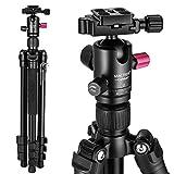 Mactrem カメラ 三脚 レバー式 4段 デジタルカメラ 一眼レフカメラ Canon Nikon Petax Sonyなど用 自由雲台 クイックシュー付き アルミ製 旅行 ビデオ三脚 三脚・一脚可変式&ボールヘッド 2年保証 CT62A