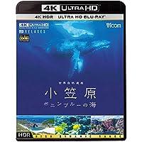 世界自然遺産 小笠原 【4K・HDR】~ボニンブルーの海~