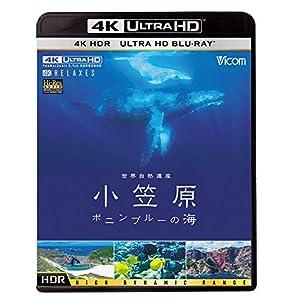 世界自然遺産 小笠原 【4K・HDR】~ボニンブルーの海~ [Ultra HD Blu-ray]