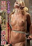 ハードSM 悶絶金髪美女縄奴隷 Vol.01 PAINBLOOD/妄想族 [DVD]