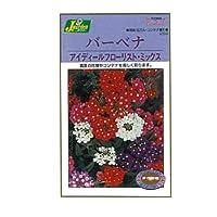 カネコ種苗 園芸・種 KS200シリーズ バーベナ アイディールフローリスト・ミックス 草花200 259