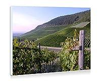 ドイツのブドウ畑 - 壁の絵 壁掛け ソファの背景絵画 壁アート写真の装飾画の壁画 旅行 風景 景色 - (60cmx40cm)