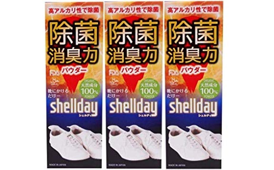 イデオロギー征服する法王シェルデイ 靴消臭パウダー 大容量 80g ×3 お得用 靴消臭 足の臭い対策消臭剤 100%天然素材