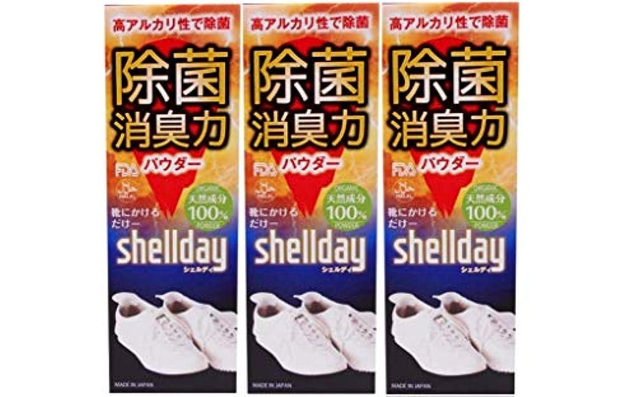 価値彼らのもの誇りシェルデイ 靴消臭パウダー 大容量 80g ×3 お得用 靴消臭 足の臭い対策消臭剤 100%天然素材