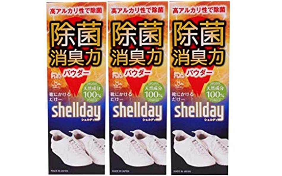 偉業スイッチミルクシェルデイ 靴消臭パウダー 大容量 80g ×3 お得用 靴消臭 足の臭い対策消臭剤 100%天然素材