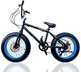 ファットバイク FAT BIKE 20インチ 自転車 ギア付 (BLACK/BLUE, 20インチ)