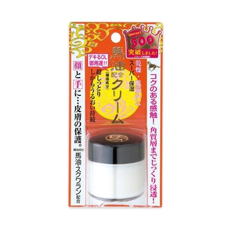マニフェスト健康返済明色化粧品 リモイストクリーム リッチタイプ 30g [ヘルスケア&ケア用品]