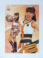 BBM2015プロ野球チアリーダー/華【レギュラーカード】華68/風見和/巨人/team venus
