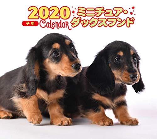 2020年 ミニ判カレンダー ミニチュア・ダックスフンド