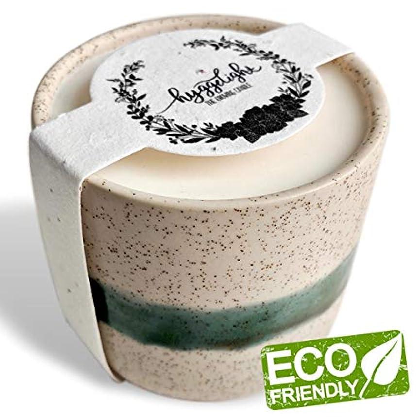 提供弱まる地区Edithコレクション8.5 Oz – 100 %大豆Hyggeキャンドル、再利用可能なセラミック+テラコッタプランターポットコンテナ、Eco Friendly、エッセンシャルオイル、有機香り、非GMO Wildflower...