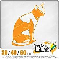 KIWISTAR - Cat sitting Cat 15色 - ネオン+クロム! ステッカービニールオートバイ