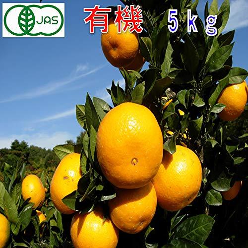 有機JAS みかん 訳あり 約5kg 和歌山産 極早生 2S〜L サイズ混合 ミカン 蜜柑 産地直送 SSS
